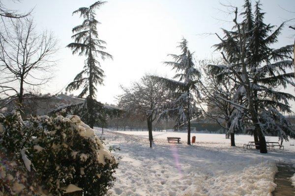 Neve al Centro